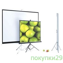 Экран Экран на штативе, ScreenMedia Apollo, 153x203 MW SAM-4303